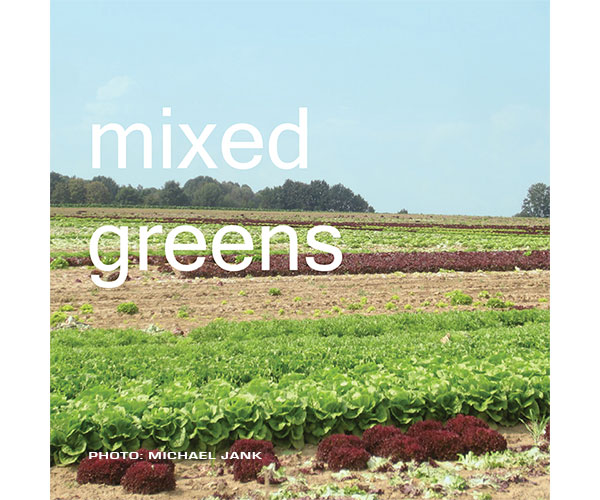 Dmixed-greens-1.jpg