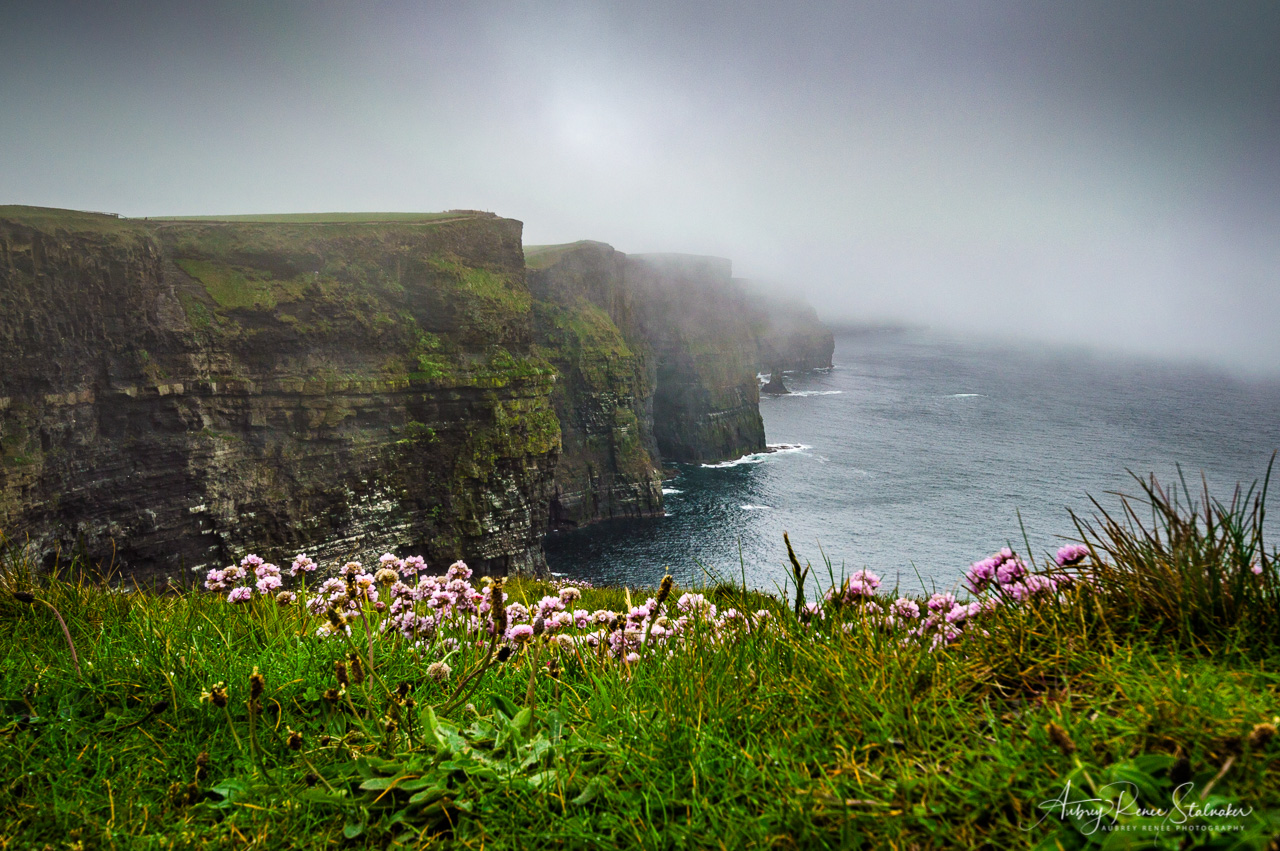Foggy Day at the Cliffs of Moher, Ireland