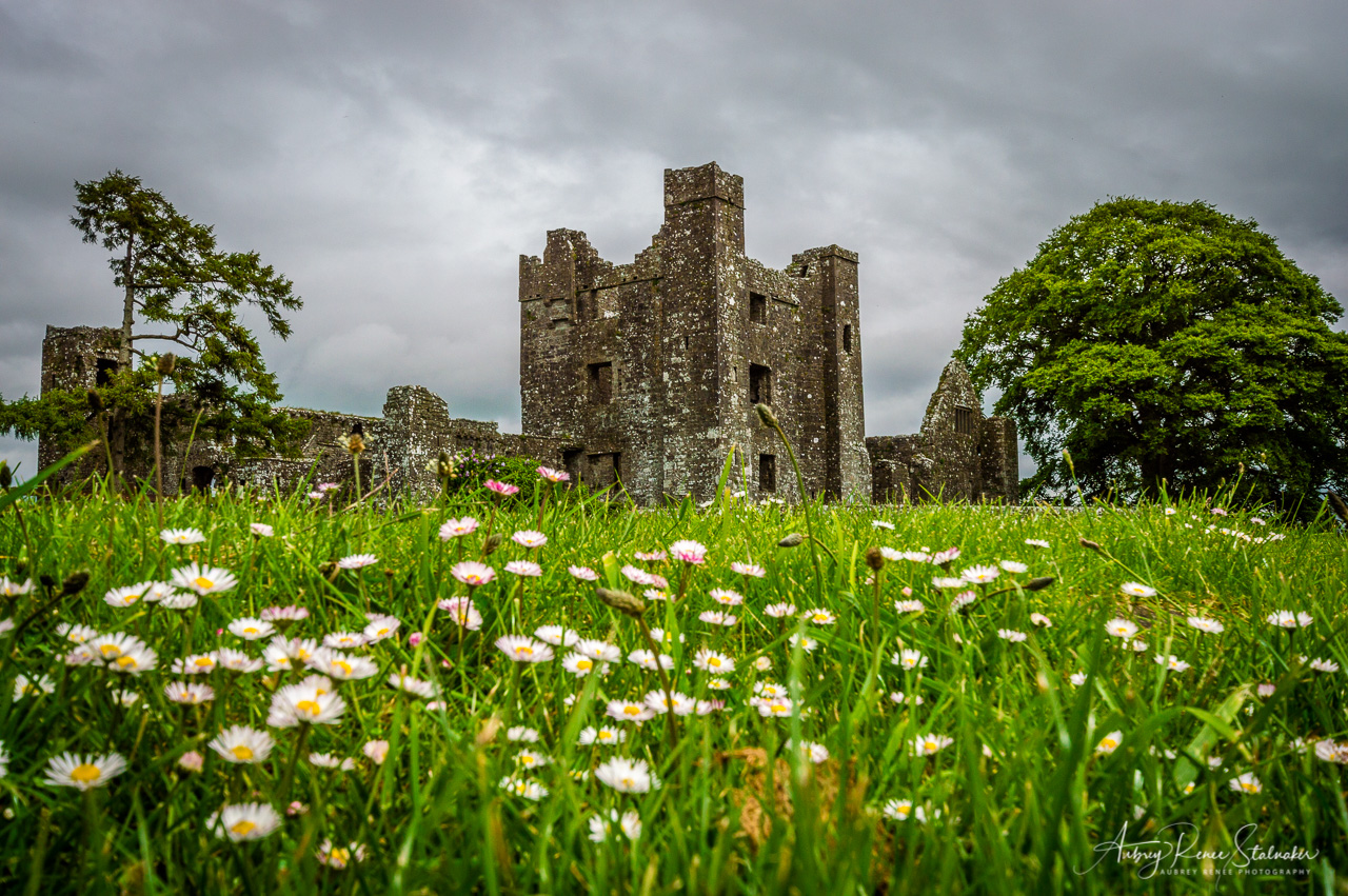 Bective Abbey, Ireland
