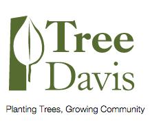 TreeDavis.png