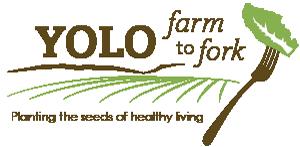 yolo community foundation — RepowerYolo - BLOG — RepowerYolo
