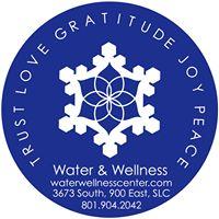 water wellness logo.jpg