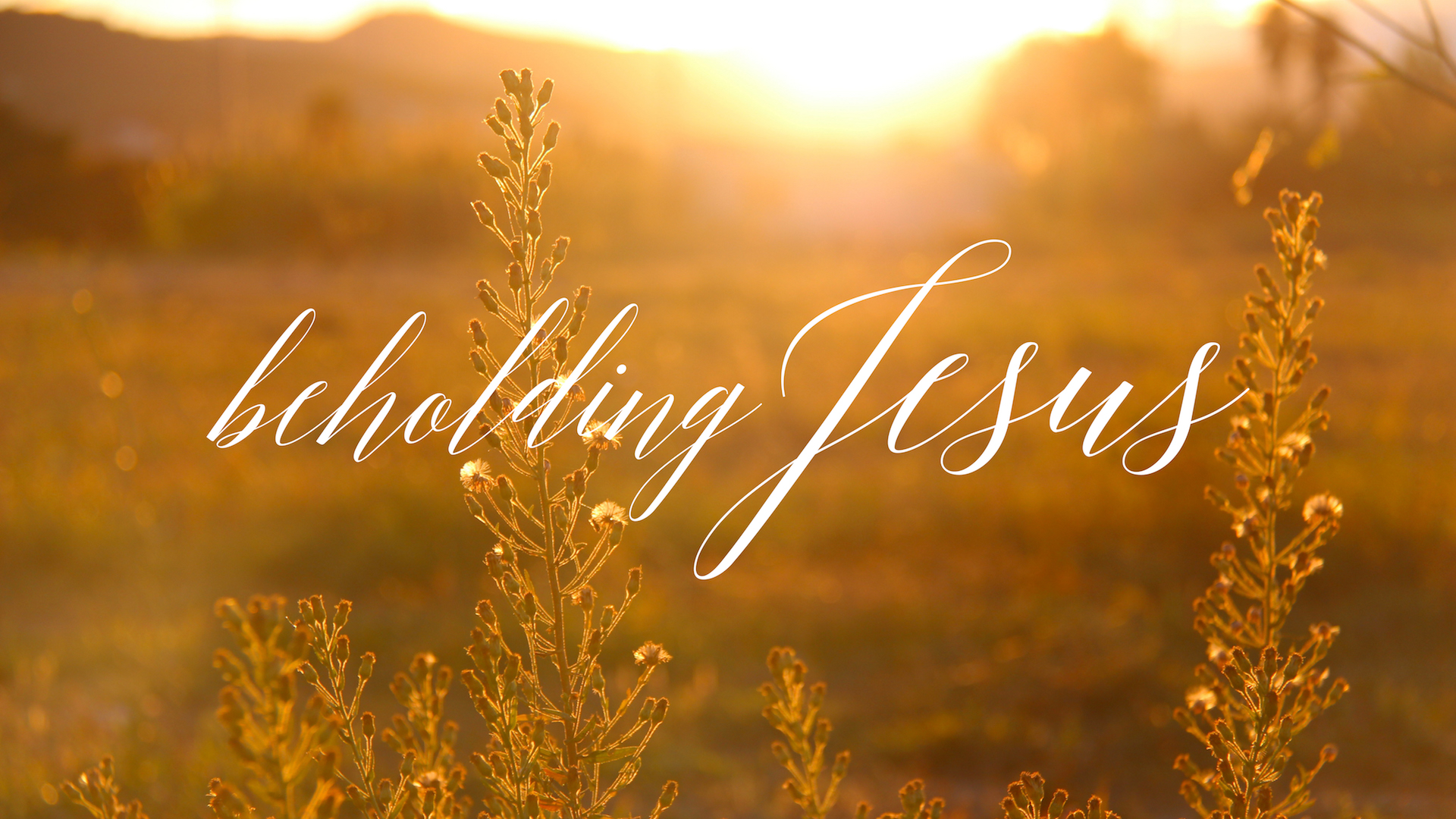 Beholding Jesus.jpg