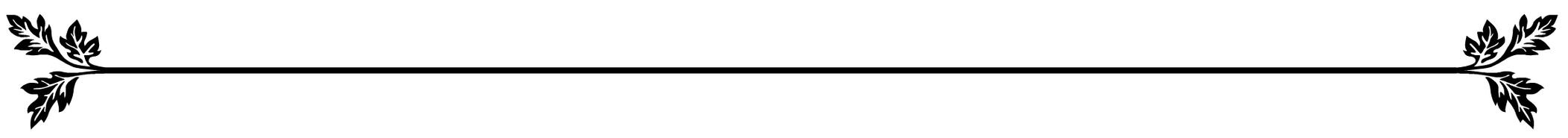line flourish.jpg