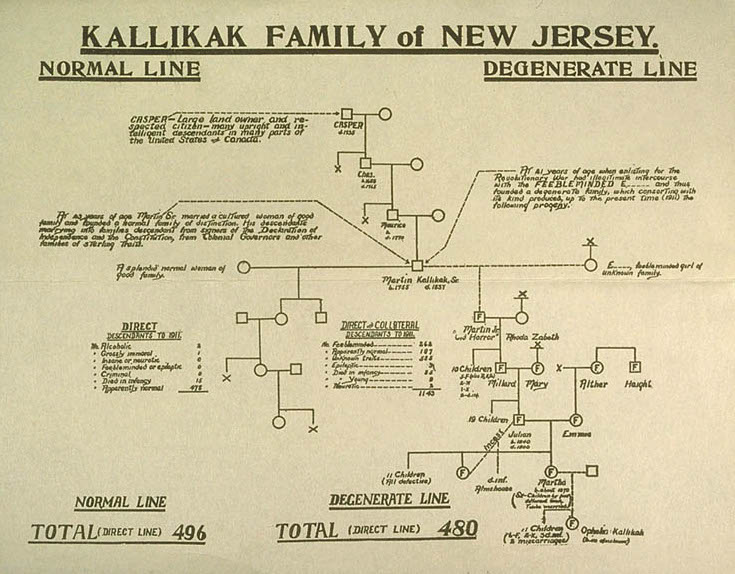 """Degenerate line of the Kallikak Family caused by """"feebleminded girl of unknown family."""" 