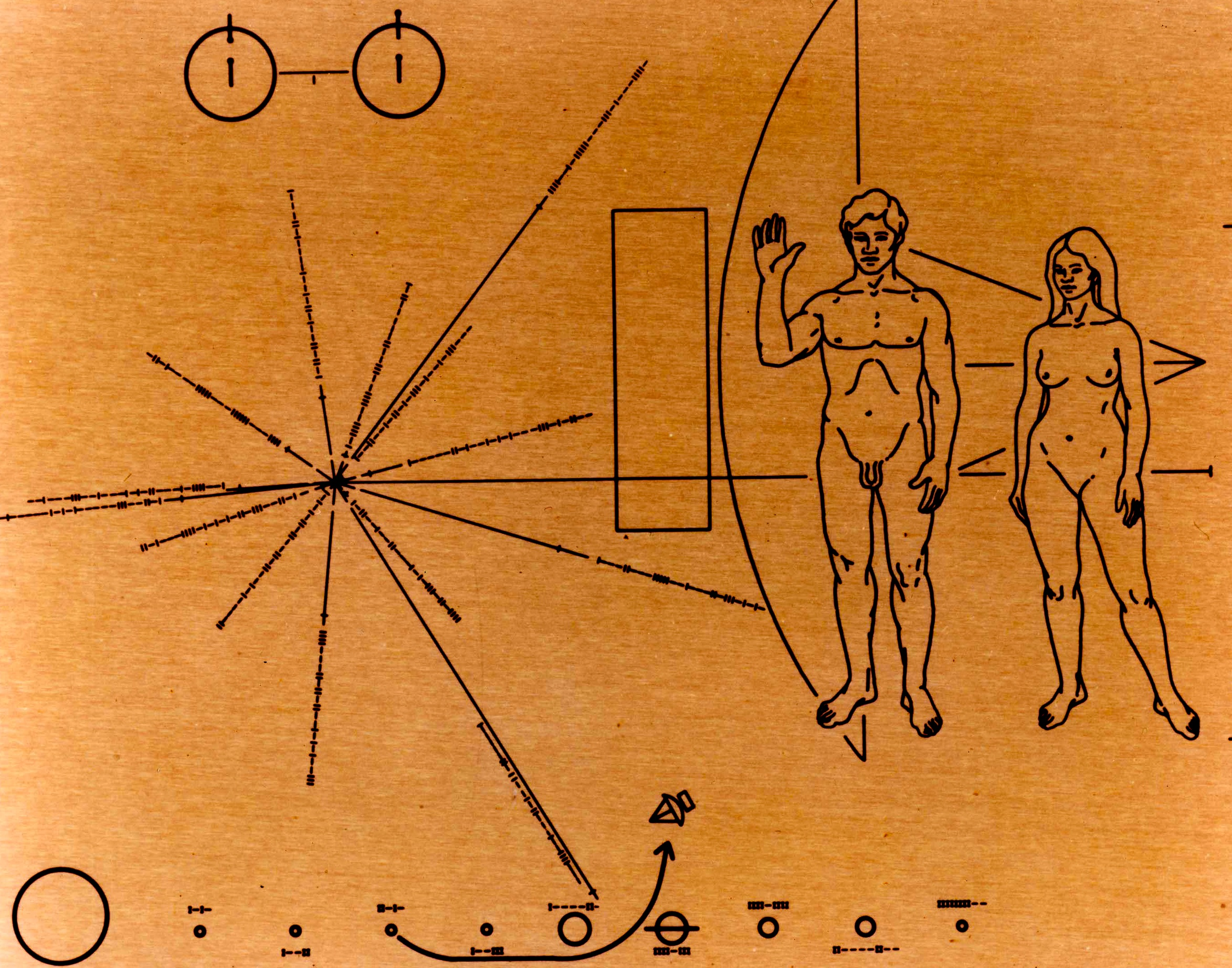 Pioneer Plaque, which is reproduced in the Science Museum 'Exploring Space' Gallery. (NASA)