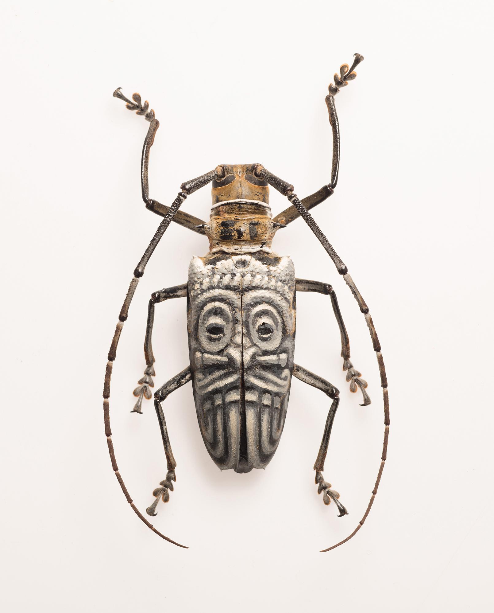 "Evan Skrederstu.  Tlaloc Mask.  2015 - acrylic on bug, 2"" x 3.5""."
