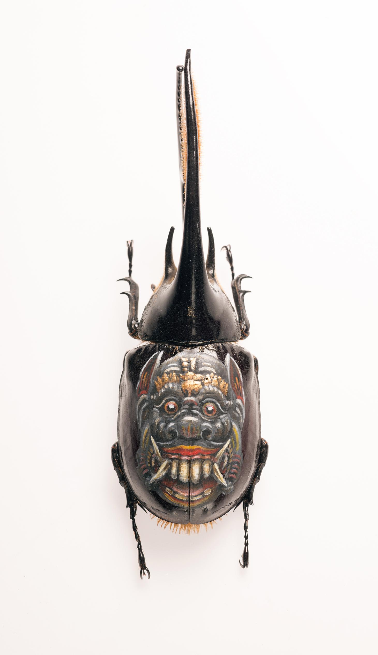 Evan Skrederstu.  Bali Mask.  2014 – acrylic on beetle, 4″ x 1.5″.