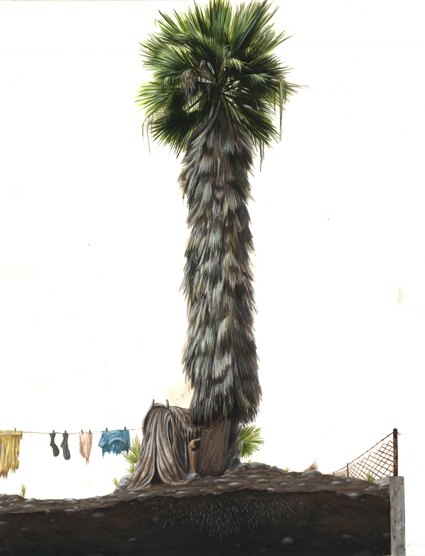 Evan Skrederstu.  Palm Life.  2006 – acrylic on board, 17″ x 12″.