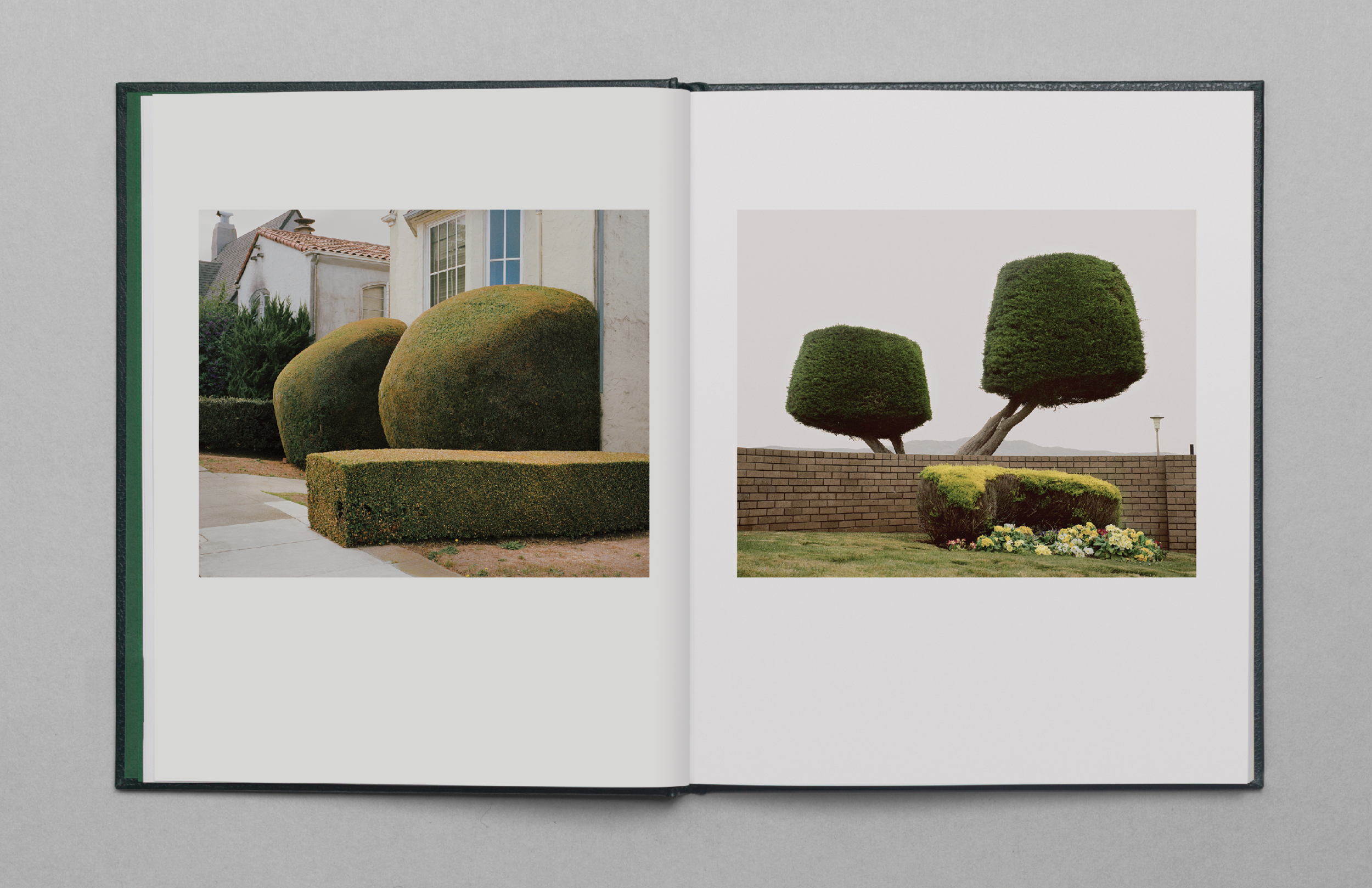 California_Topiary_Images11.png
