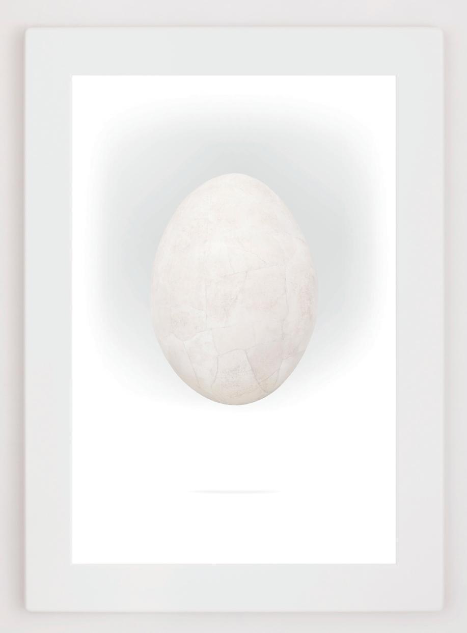 Richard Texier - Pantheo Vortex- White egg