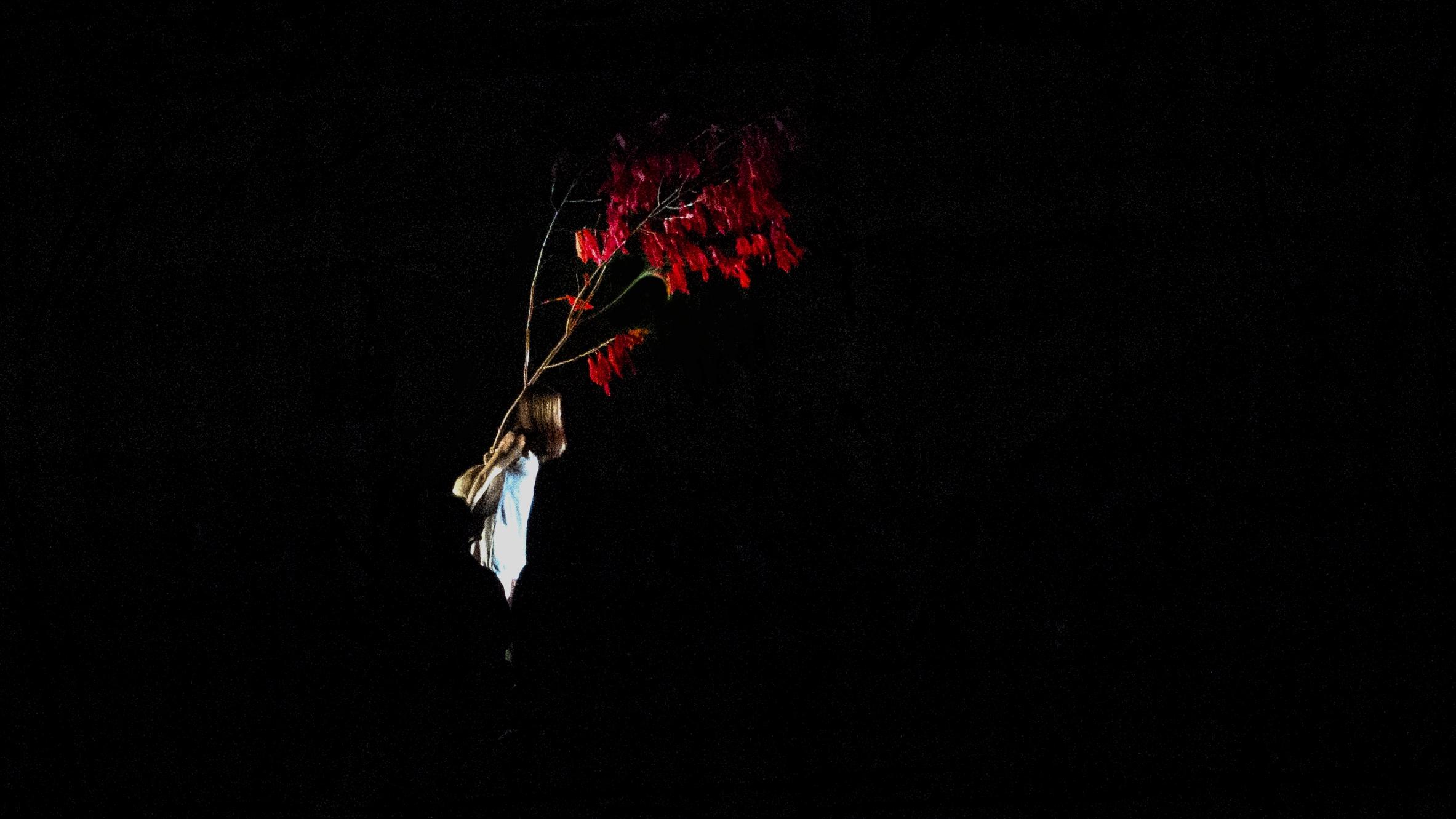 Photo 22-6-18, 9 28 10 pm.jpg