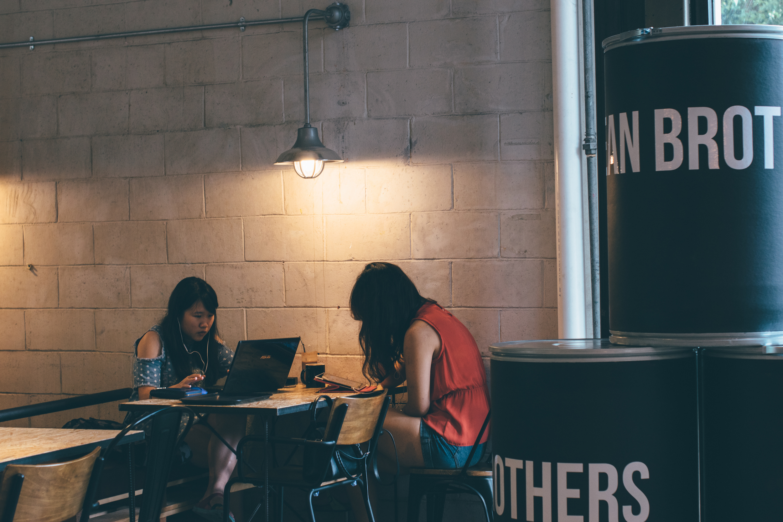 Bean Brothers Malaysia | A Beautiful Distraction