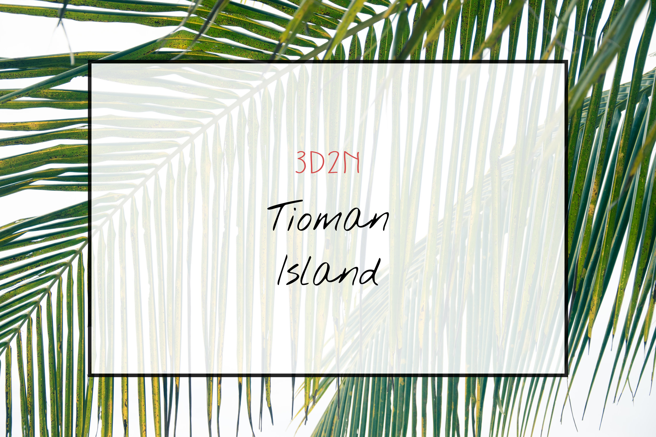 Tioman Island Malaysia 2016 | A Beautiful Distraction