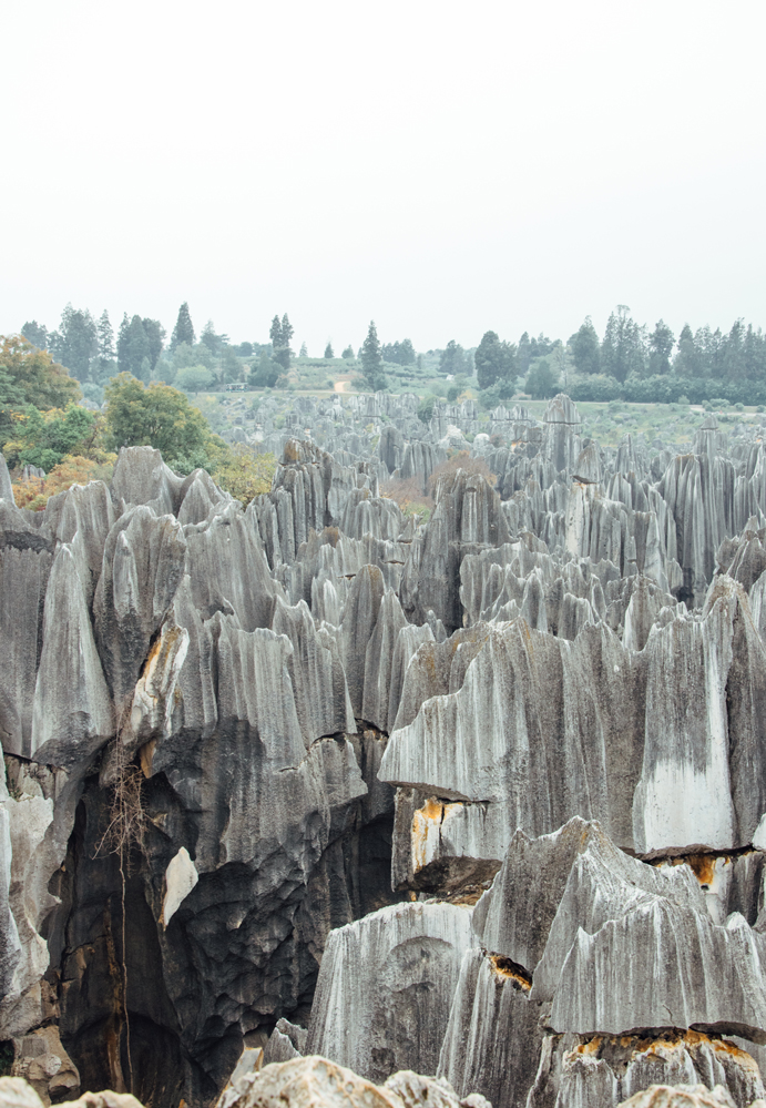 Stone Forest, Shilin, Kunming, Yunnan, China, 2016 |  A Beautiful Distraction