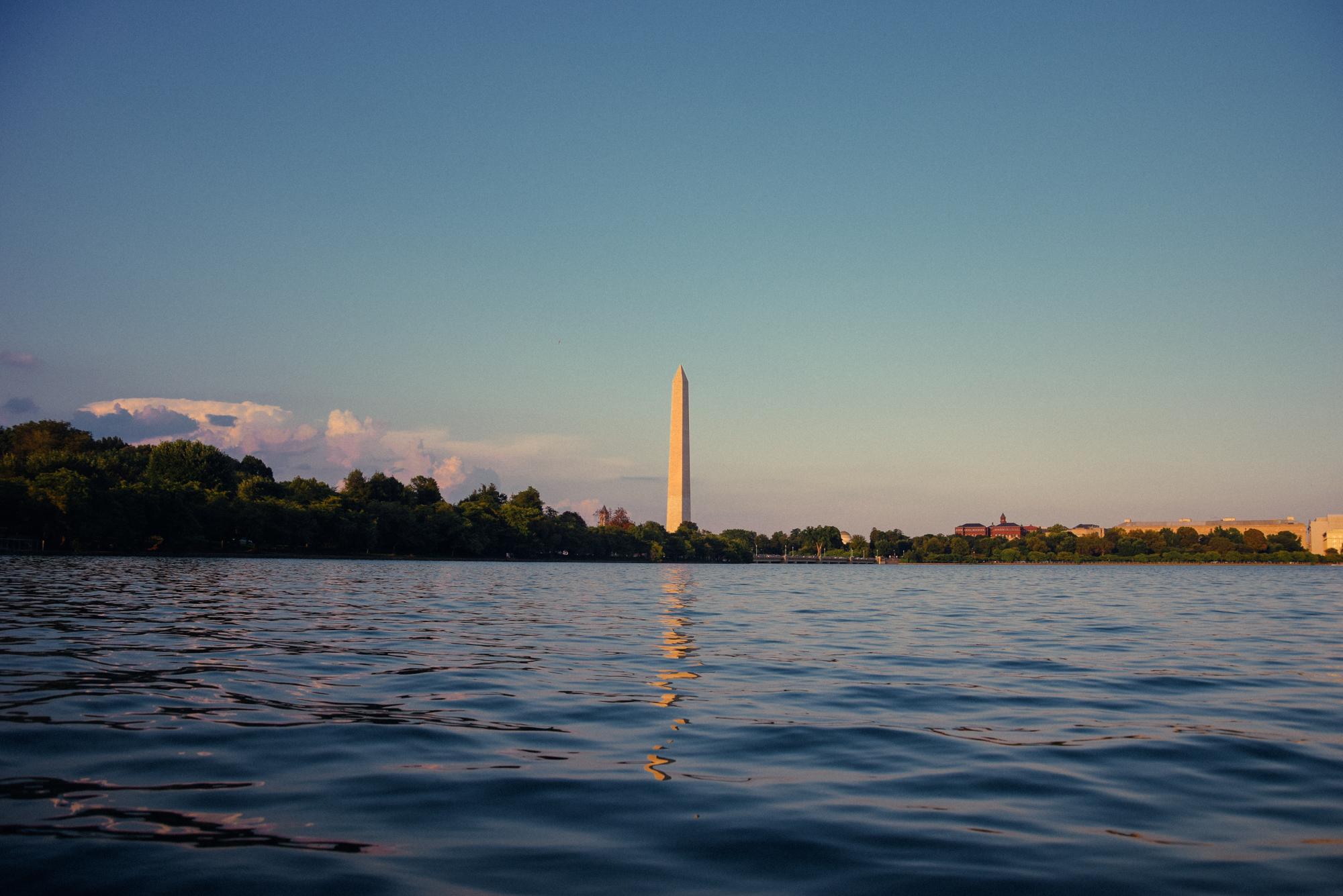 Washington D.C. USA 2018 | A Beautiful Distraction by Ruo Ling Lu