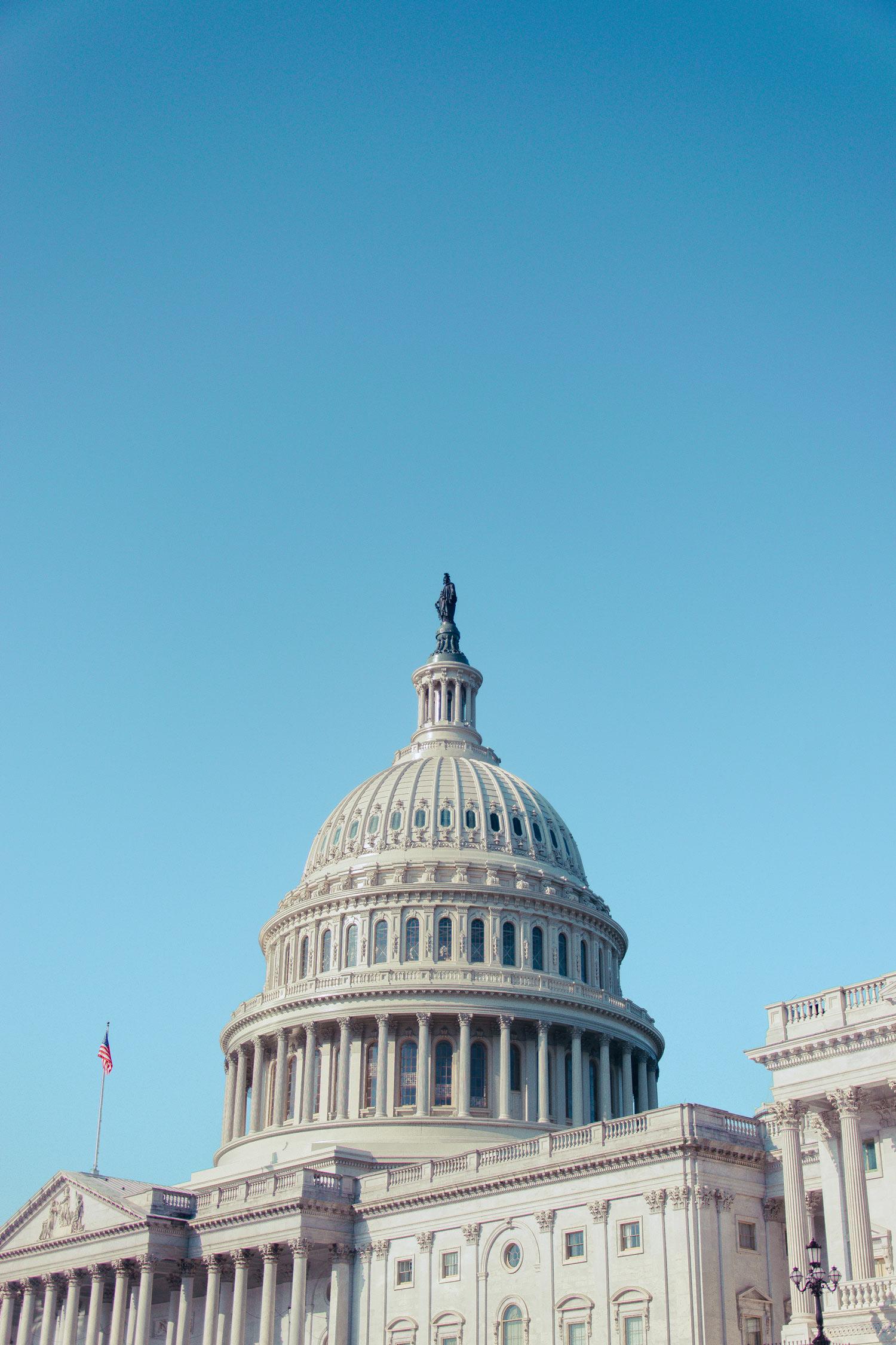 United_States_Capitol_Washington_DC_2018_Ruo_Ling_Lu.jpg
