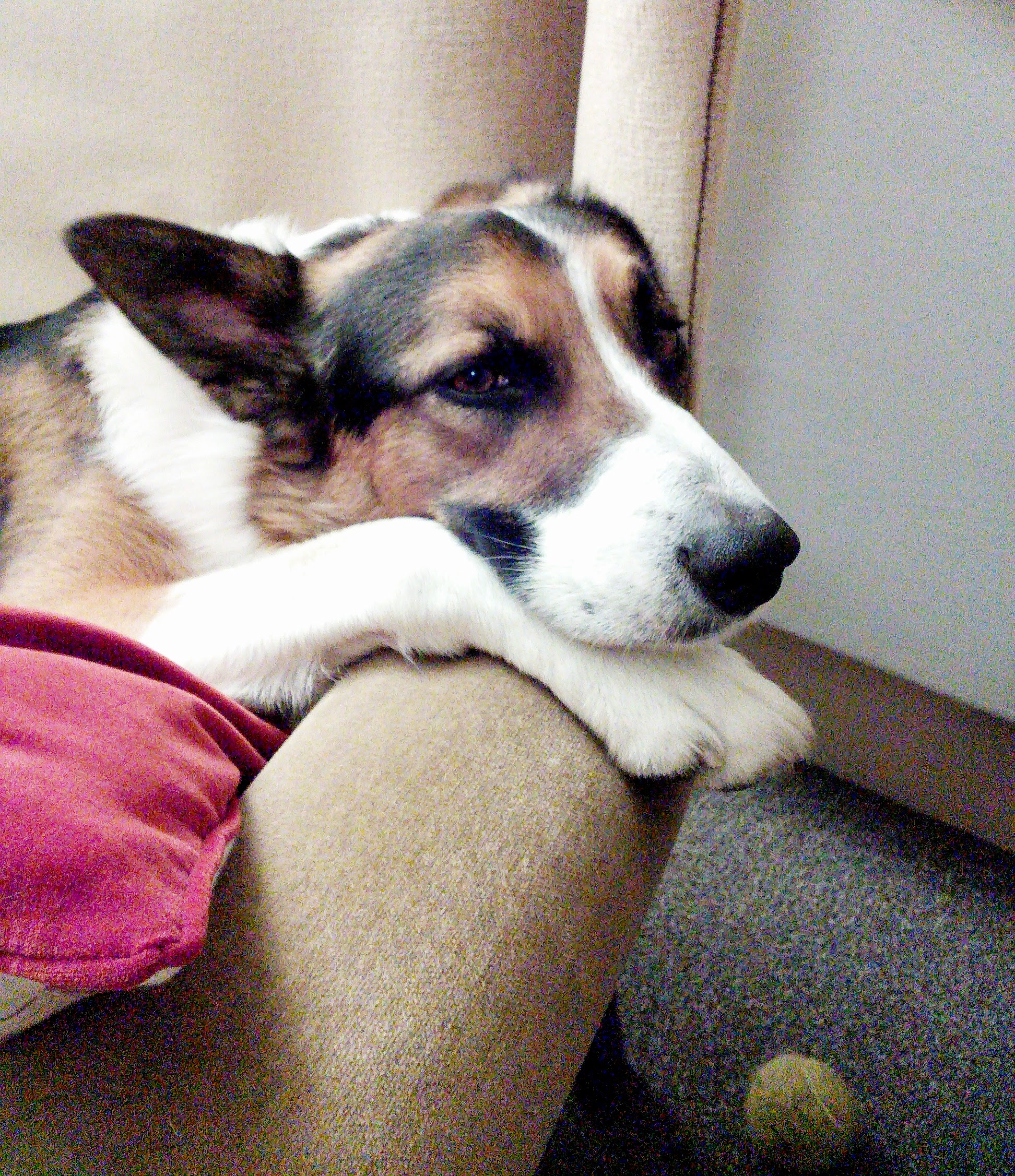 Bosco, looking sad with the thought of Fr Sony leaving!