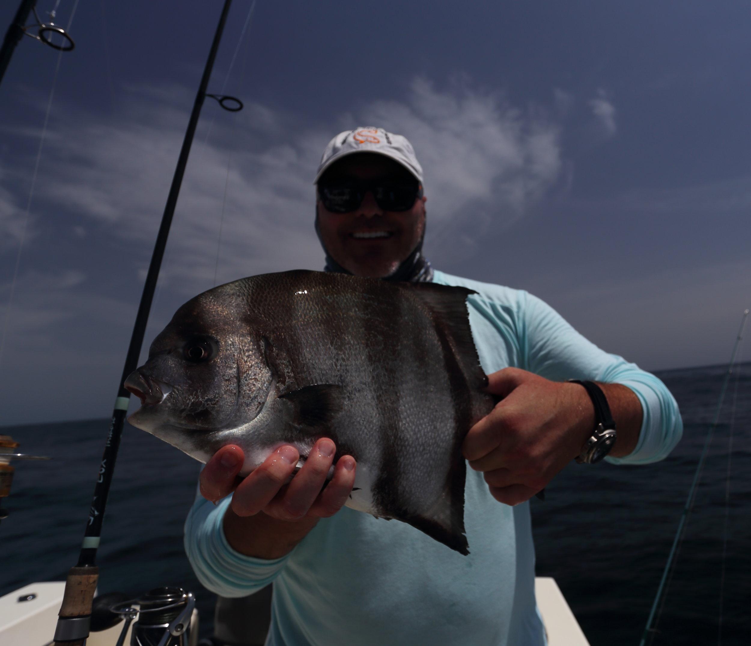 Charleston Spadefish