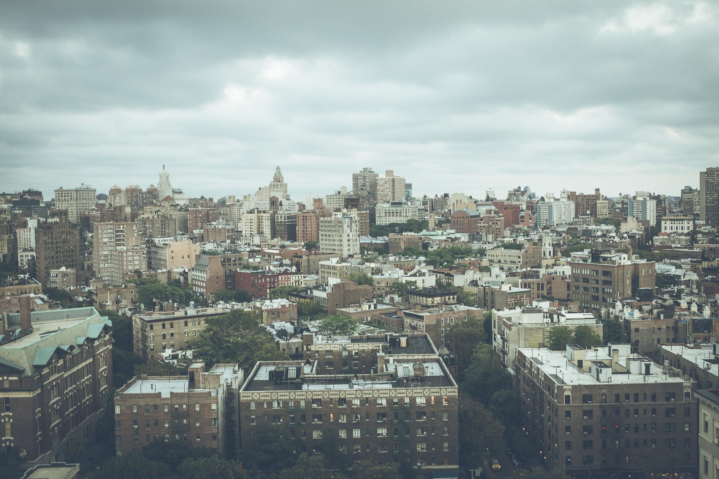 BREED-NYC-103.jpg