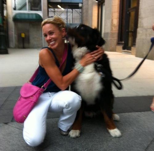 gucci-new-york-dog