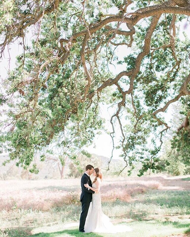 Precious moments like this are what our dreams are made of. | Photography: @thekomans | Venue: @sherwood_country_club | Coordinator: @ilanaashley | Hair & Makeup: @makeuptherapy | Styling & Design: @twoheartsevents | #WisteriaLaneFlowers . . . . .  #florist #weddingflorist #losangelesflorist #wedding #flowers #flowerstagram #weddinginspo #weddingdesign #designinspo #arrangement #blooms #weddingflowers #socalbride #socalflorist #losangelesflorist #theknot #theknotweddings #brideandgroom #bridalstyle #groomstyle #outdoorwedding #coupleshot #californiawedding