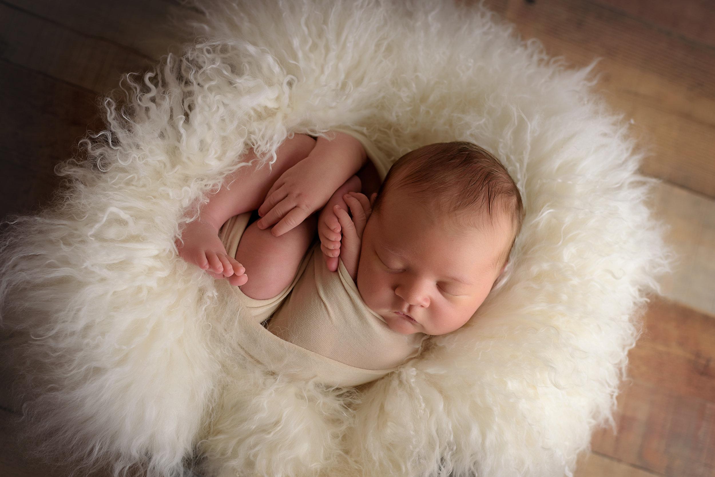 Northfield_Newborn_Photographer5.jpg