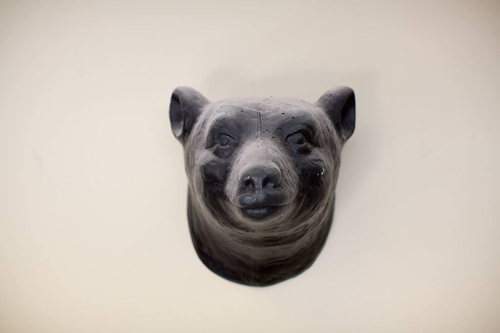 bouck bear.jpg