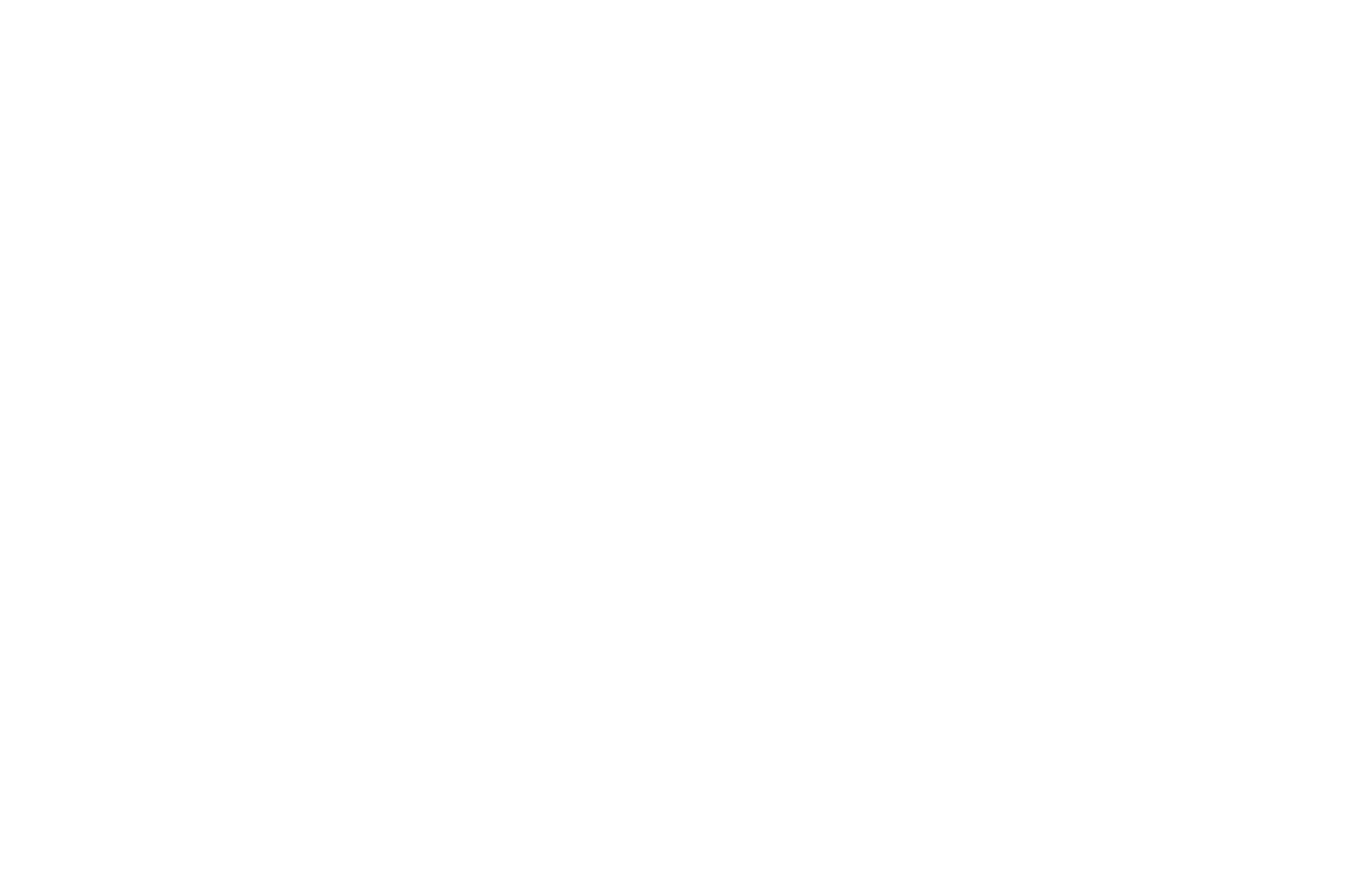 WINNER  - AWARD OF EXCELLENCE  - ACCOLADE GLOBAL FILM COMPETITION 2016 (1).png