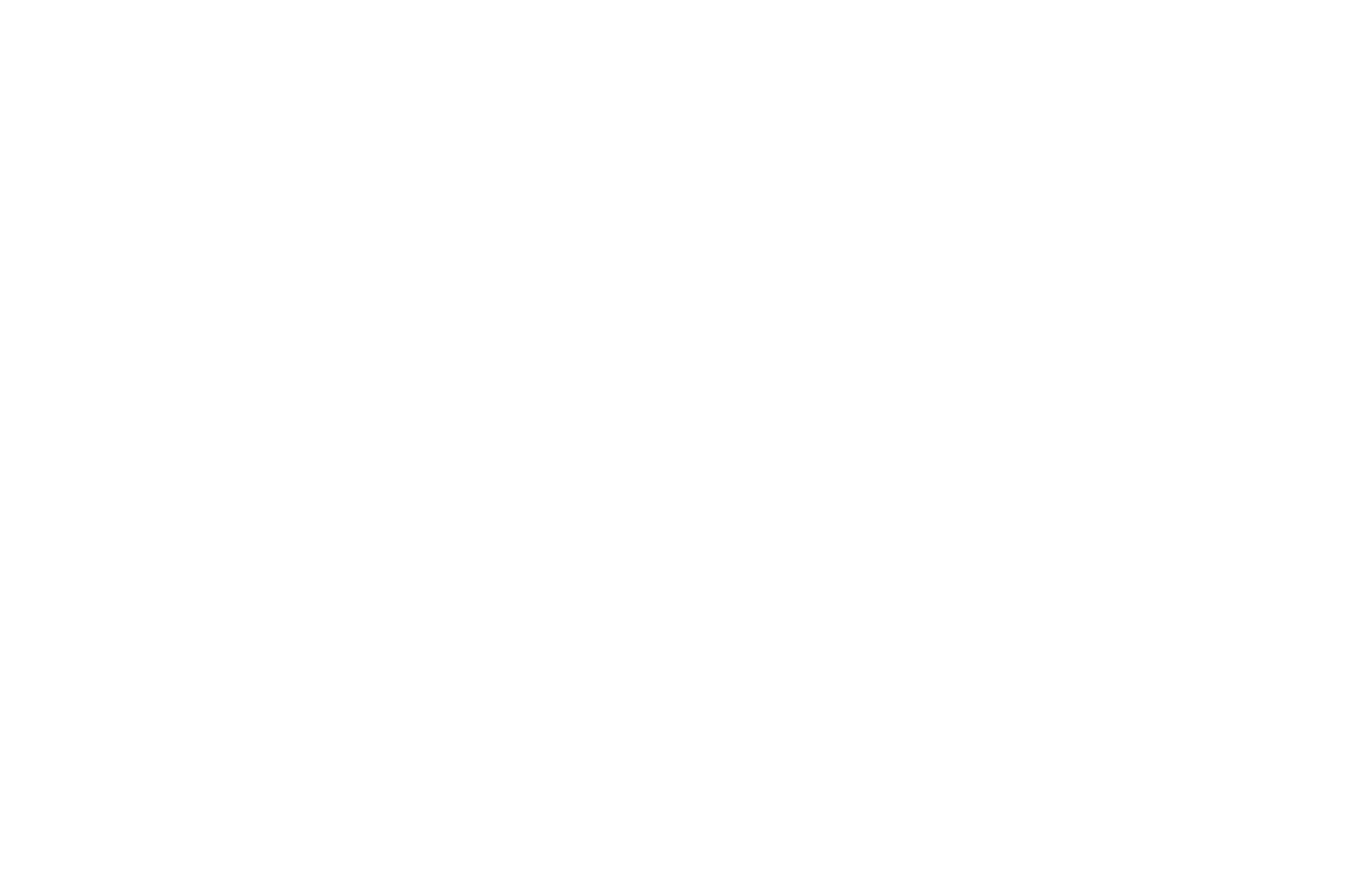 WINNER  - DIRECTOR OF THE MONTH  - DOMFF 2016 (1).png