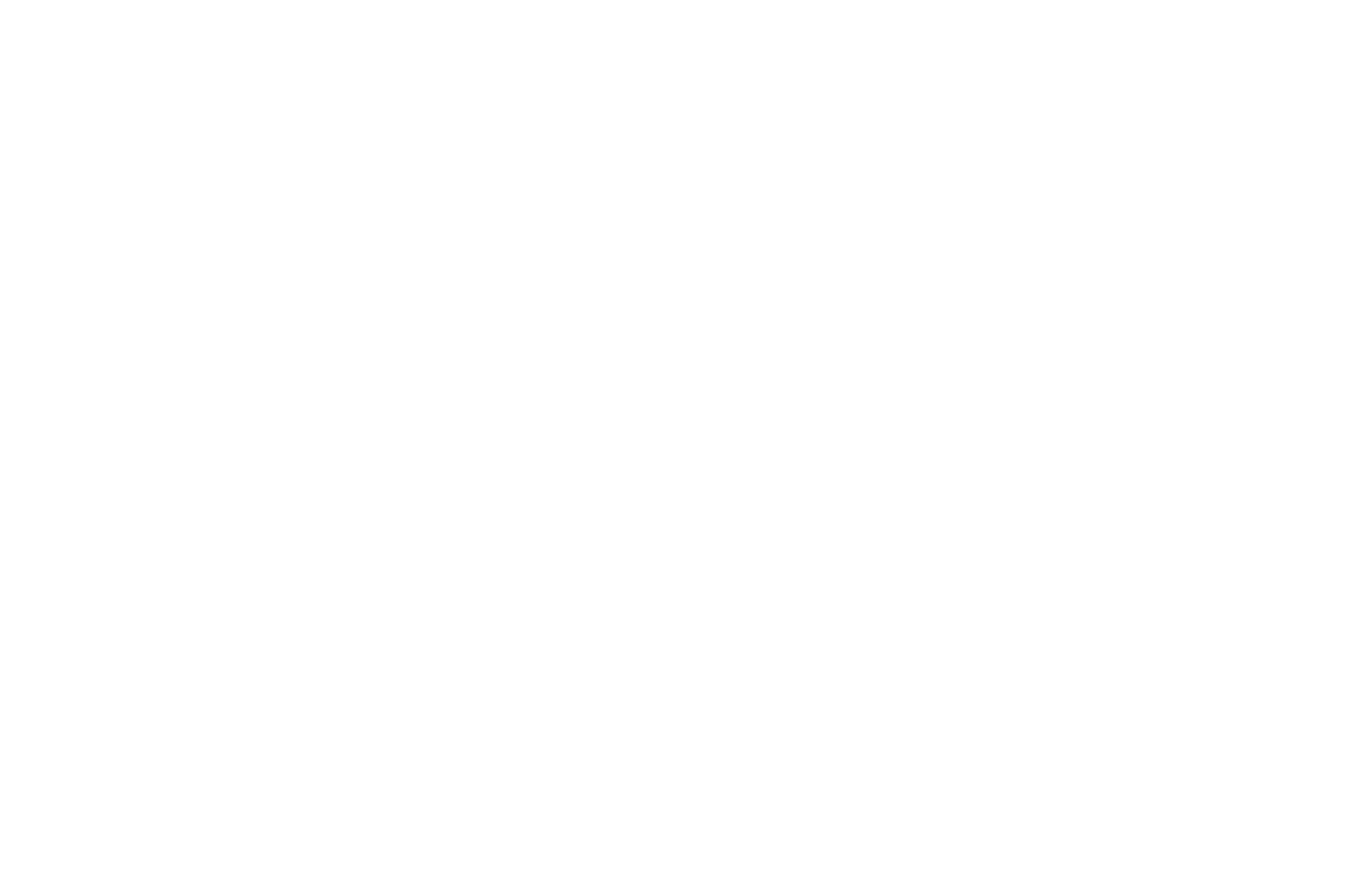 NOMINATED - BEST DIRECTOR SHORT FILM USA - NYCIFF 2016 (1).png