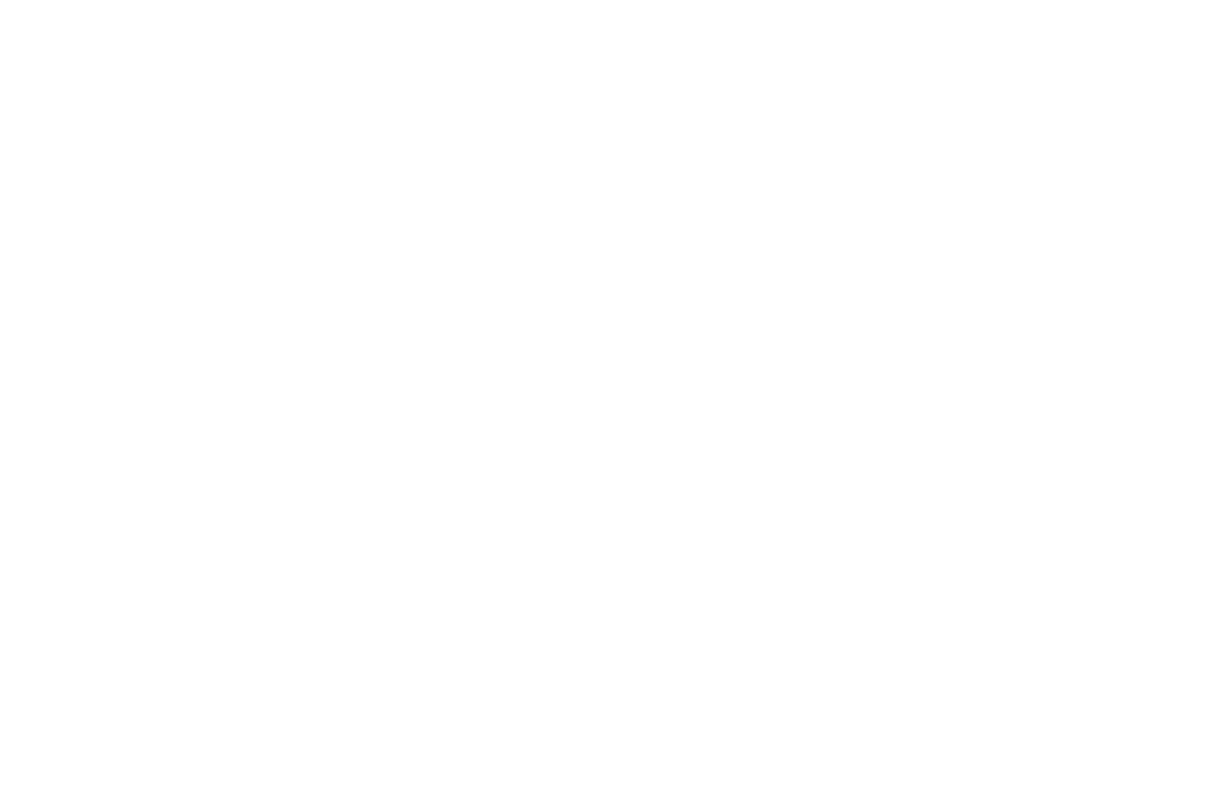 WINNER  - BEST INTERNATIONAL SHORT FILM  - ROMA CINEDOC 2016 (1).png
