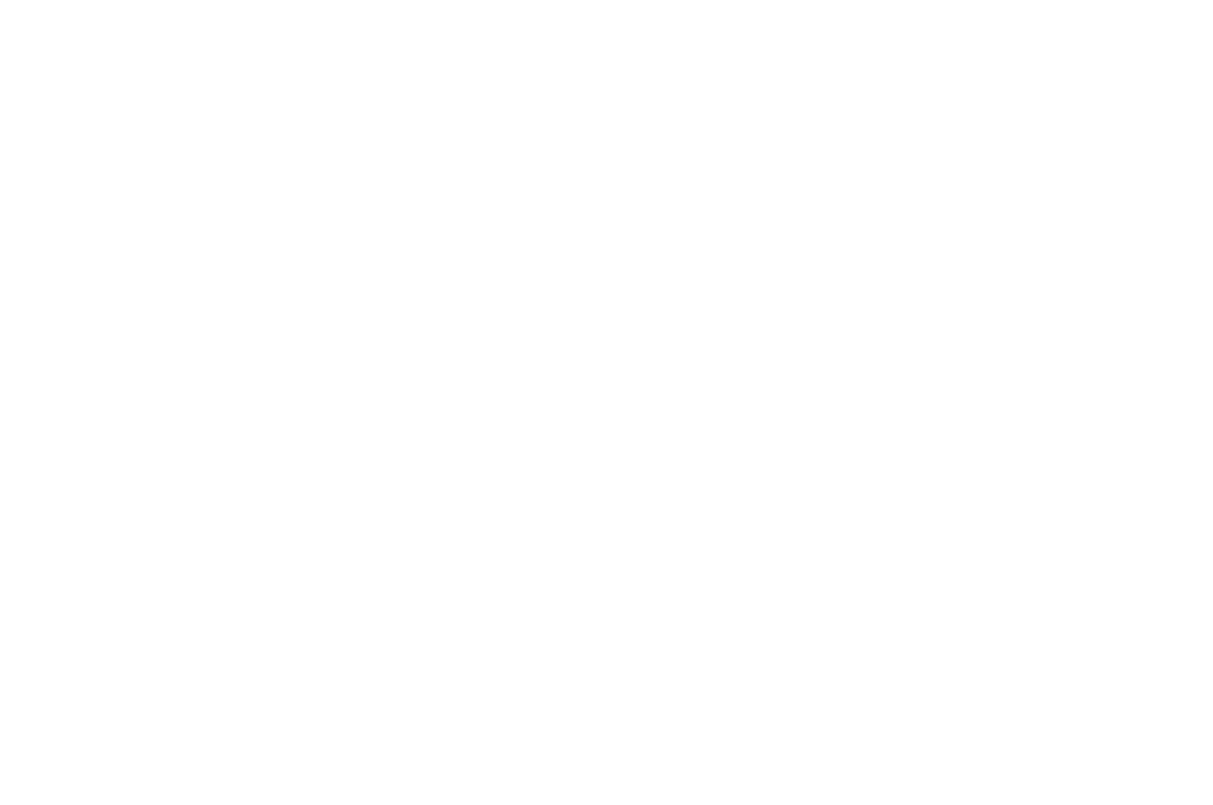 NOMINATED - BEST CINEMATOGRAPHY - THE MONKEY BREAD TREE AWARDS 2016 (1).png