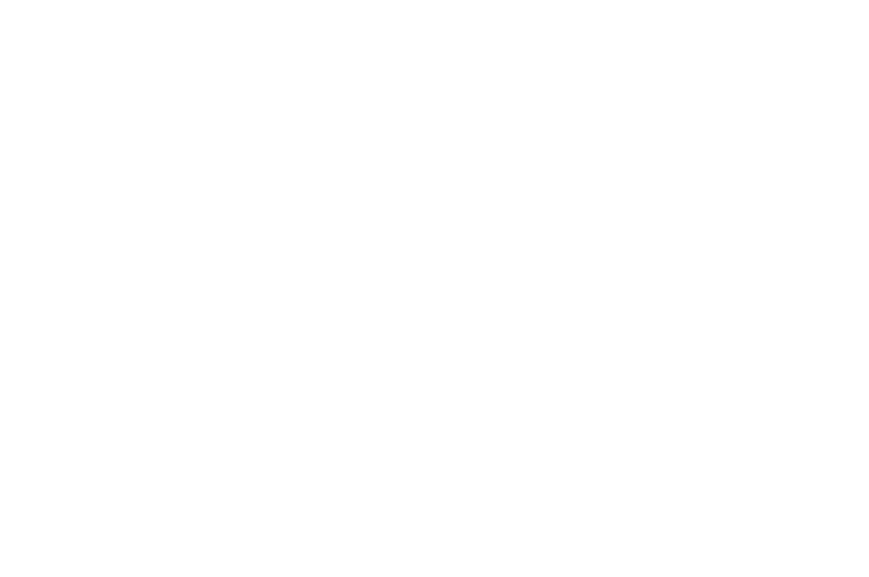 HONORABLE MENTION  - FIRST TIME DIRECTOR  - FESTIGIOUS FILM FESTIVAL 2016 (1).png