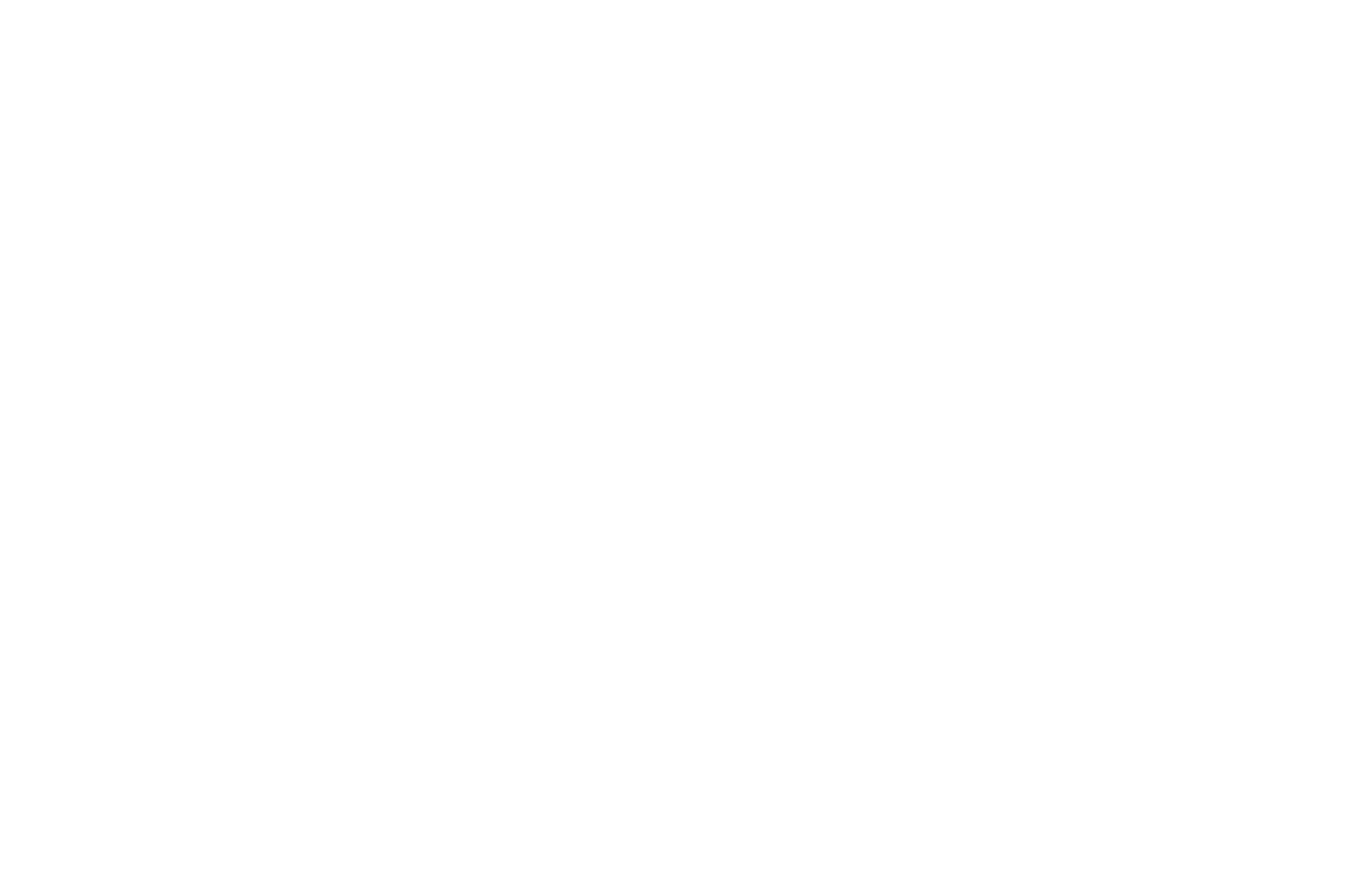 AWARD OF EXCELLENCE - BEST DIRECTOR  - HOLLYWOOD FILM COMPETITION 2016.png