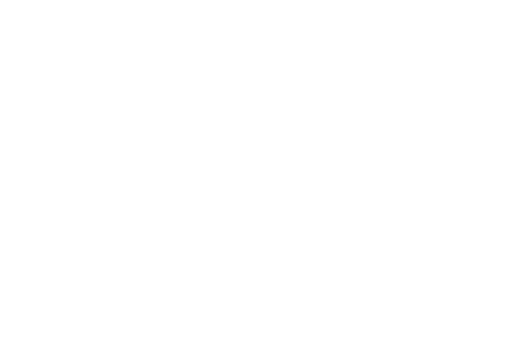 AWARD OF EXCELLENCE - BEST SHORT FILM  - HOLLYWOOD FILM COMPETITION 2016 (1).png