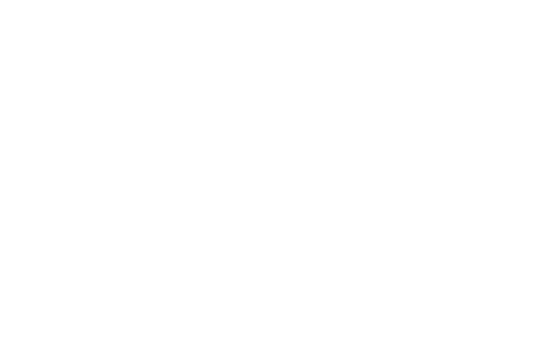 NOMINATED  - BEST DIRECTOR  - HANG ONTO YOUR SHORTS 2017.png