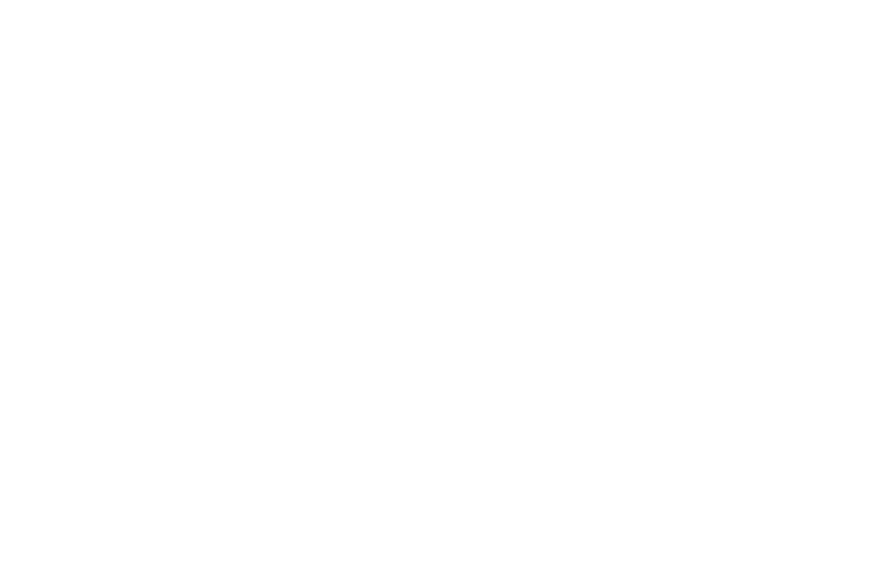 WINNER - BEST FIRST TIME DIRECTOR  - HONOLULU FILM AWARDS 2017.png