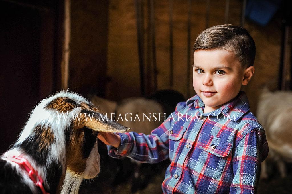 FarmPhotos-282.JPG