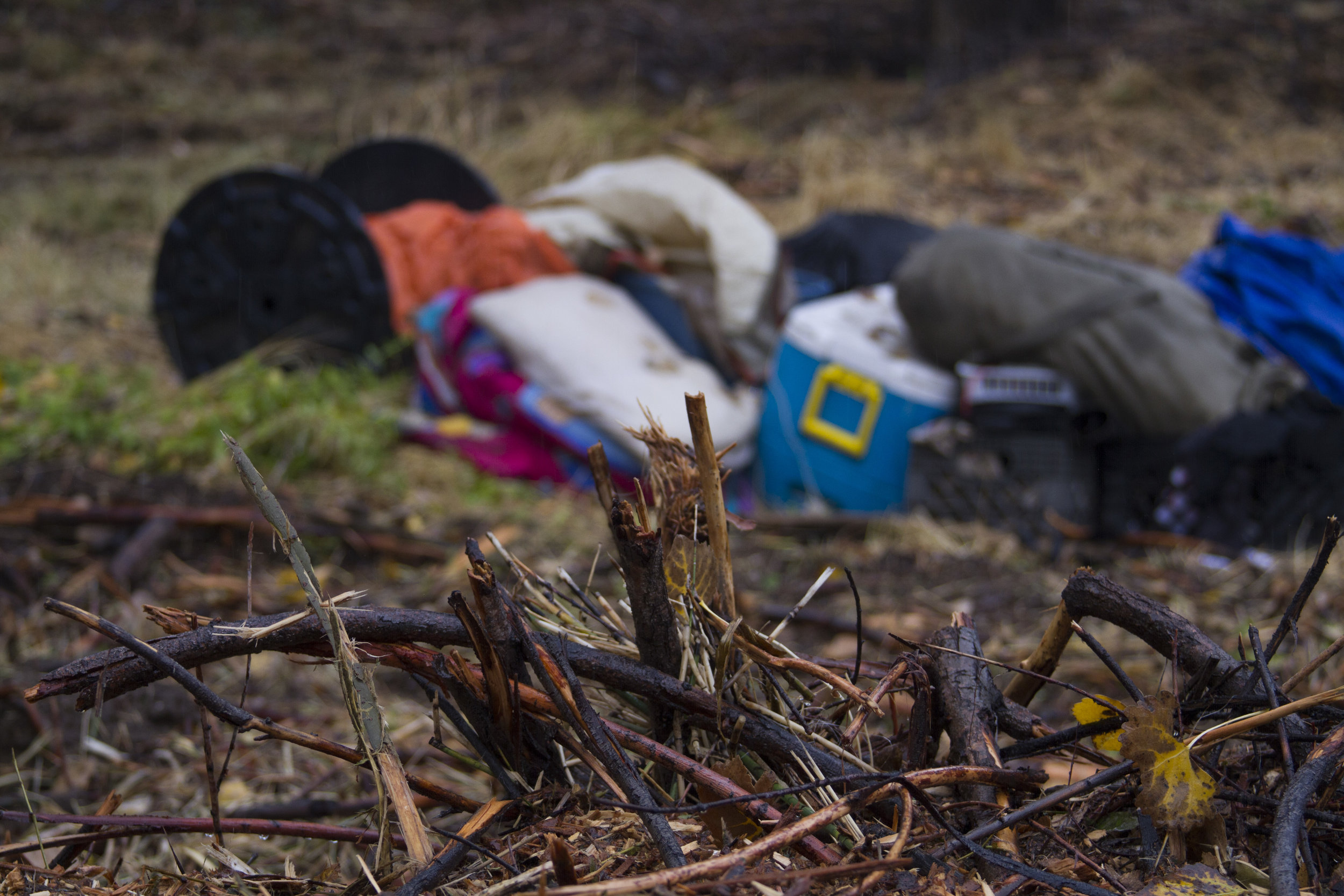 A homeless person's property can be seen in the background while remnants of chainsawed brush sits in the foreground,