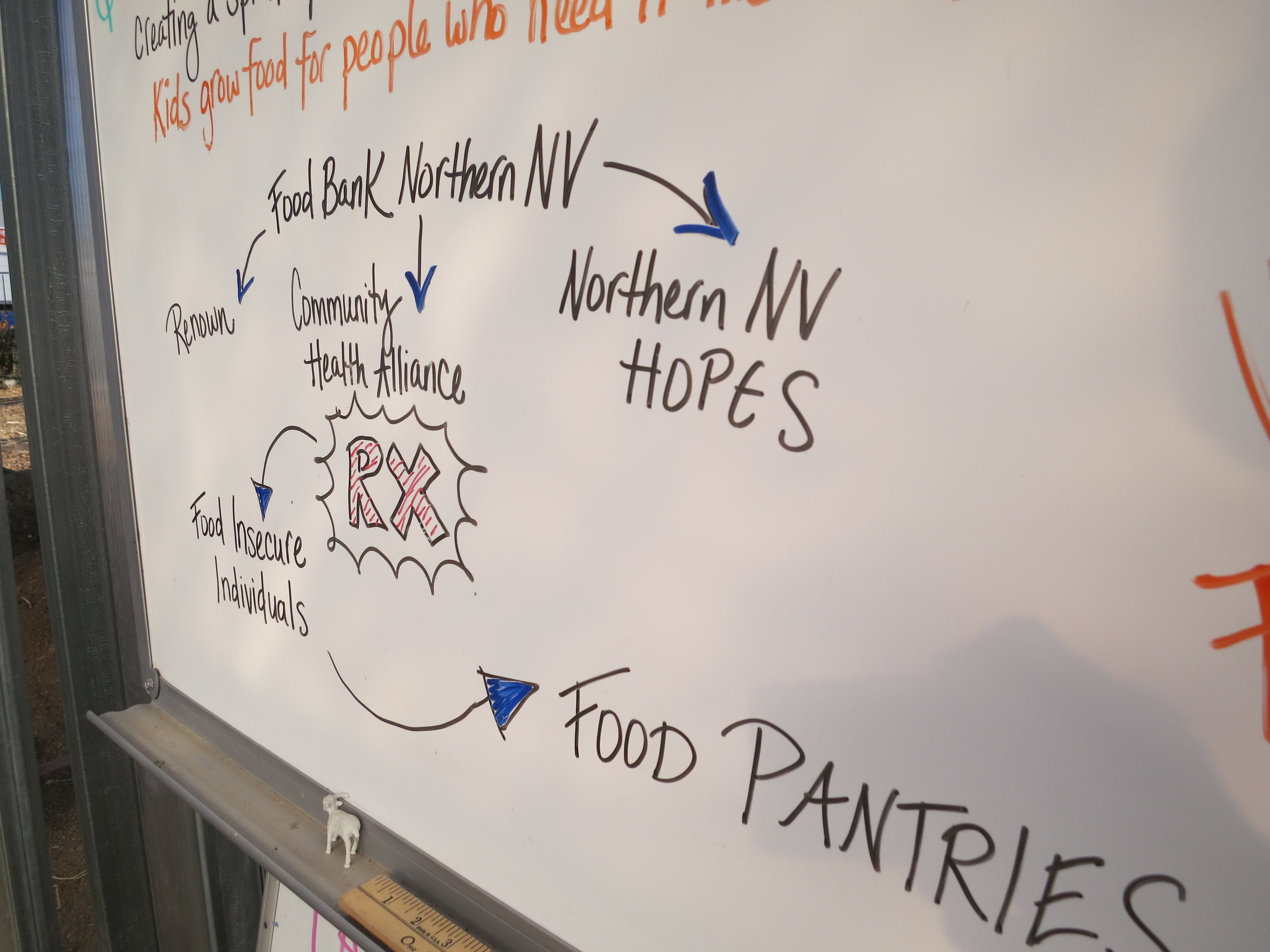 Urban Roots plays an integral part in the local pilot Prescription Pantry program, whereby medical professionals screen patients to see if they have access to adequate food and if not, writing them prescriptions for healthy food matching their diagnosis.