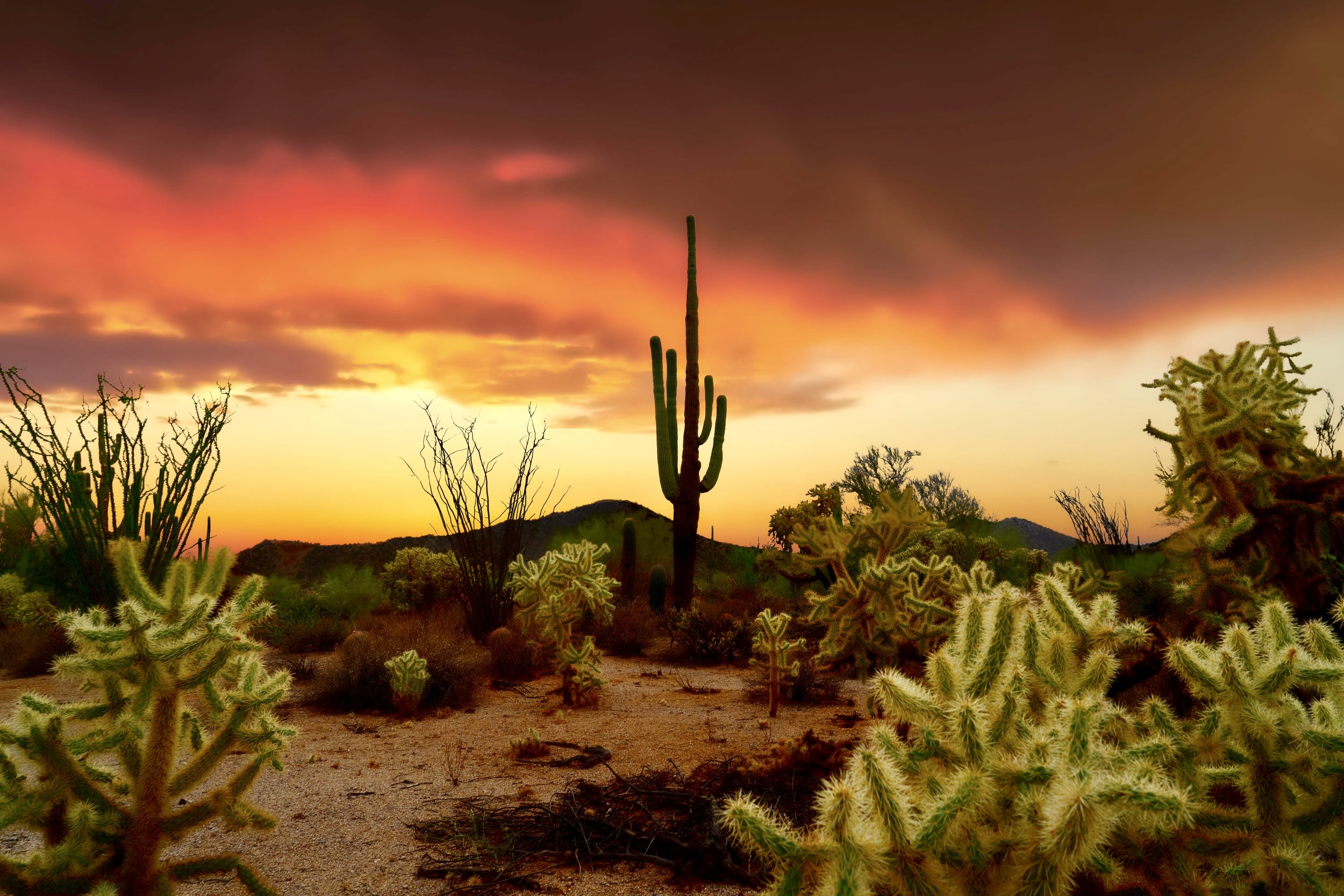 """Photo taken during monsoon season where the desert gets graced with stormy skies and incredible sunsets."""