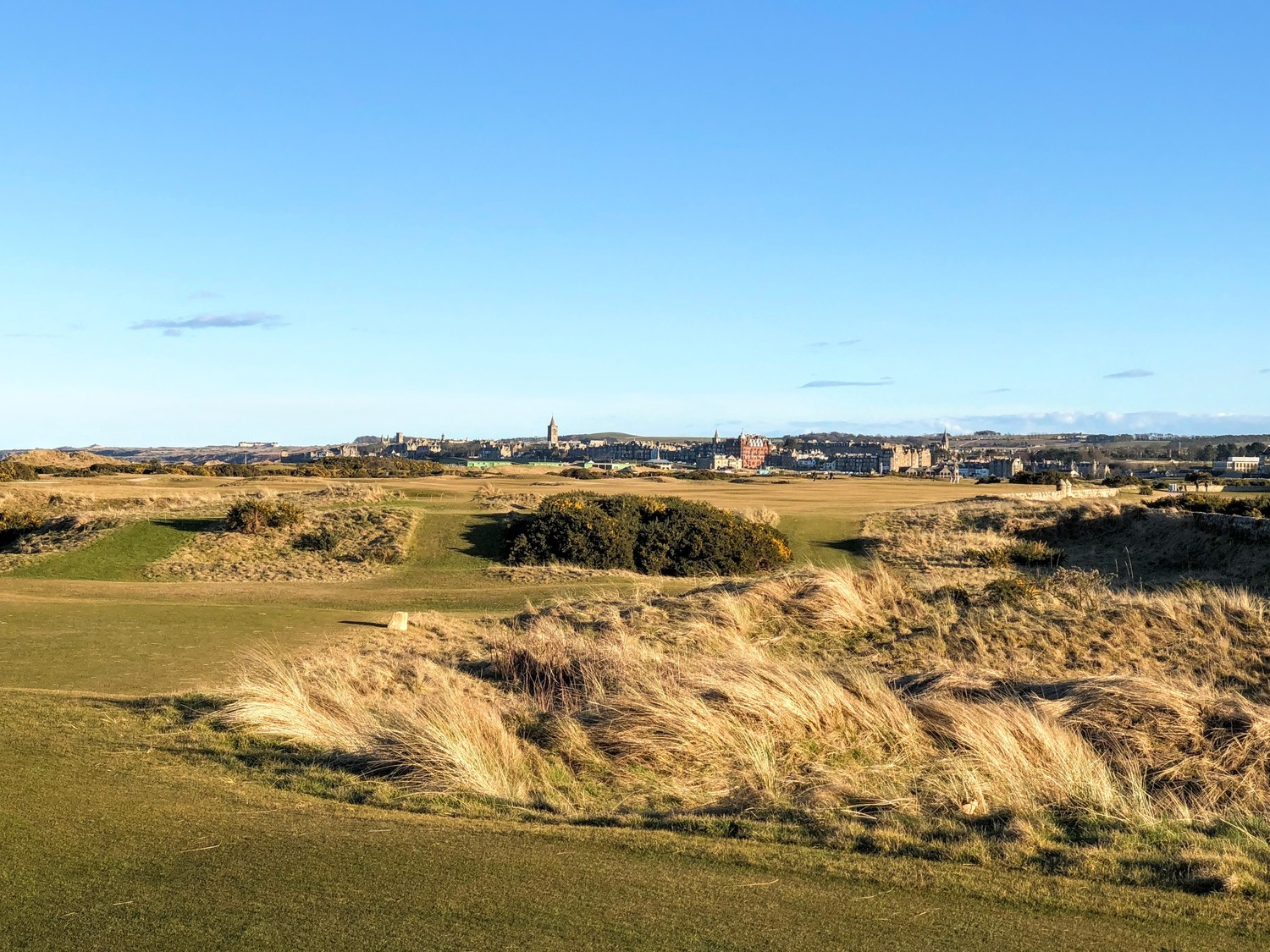 Old_course_5_1500x.jpg