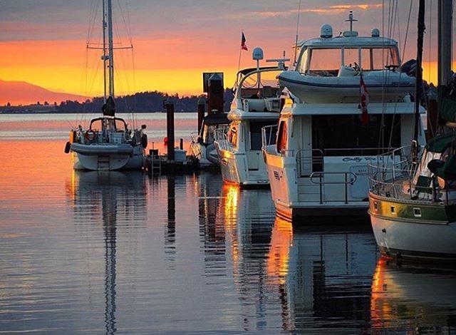 Sunrise shots never get old ❤️ 📸 @douggamble  #cowichanvalley #marina #beautifulbc #destinationbc #sailboat #oceansunrise #gulfislands #millbaymarinegroup