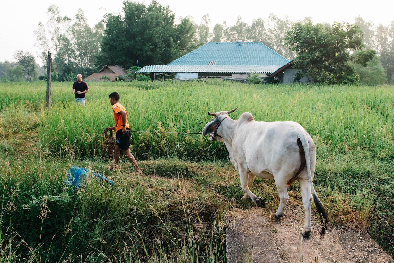 Thailand 2017 023.jpg