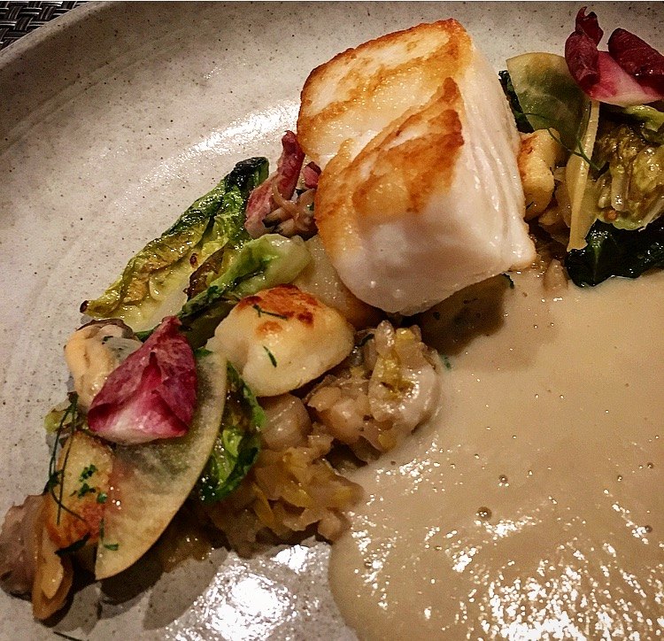 The Ling Cod was so fresh! Served with fennel, clams, potato gnocchi, lettuce and apple.