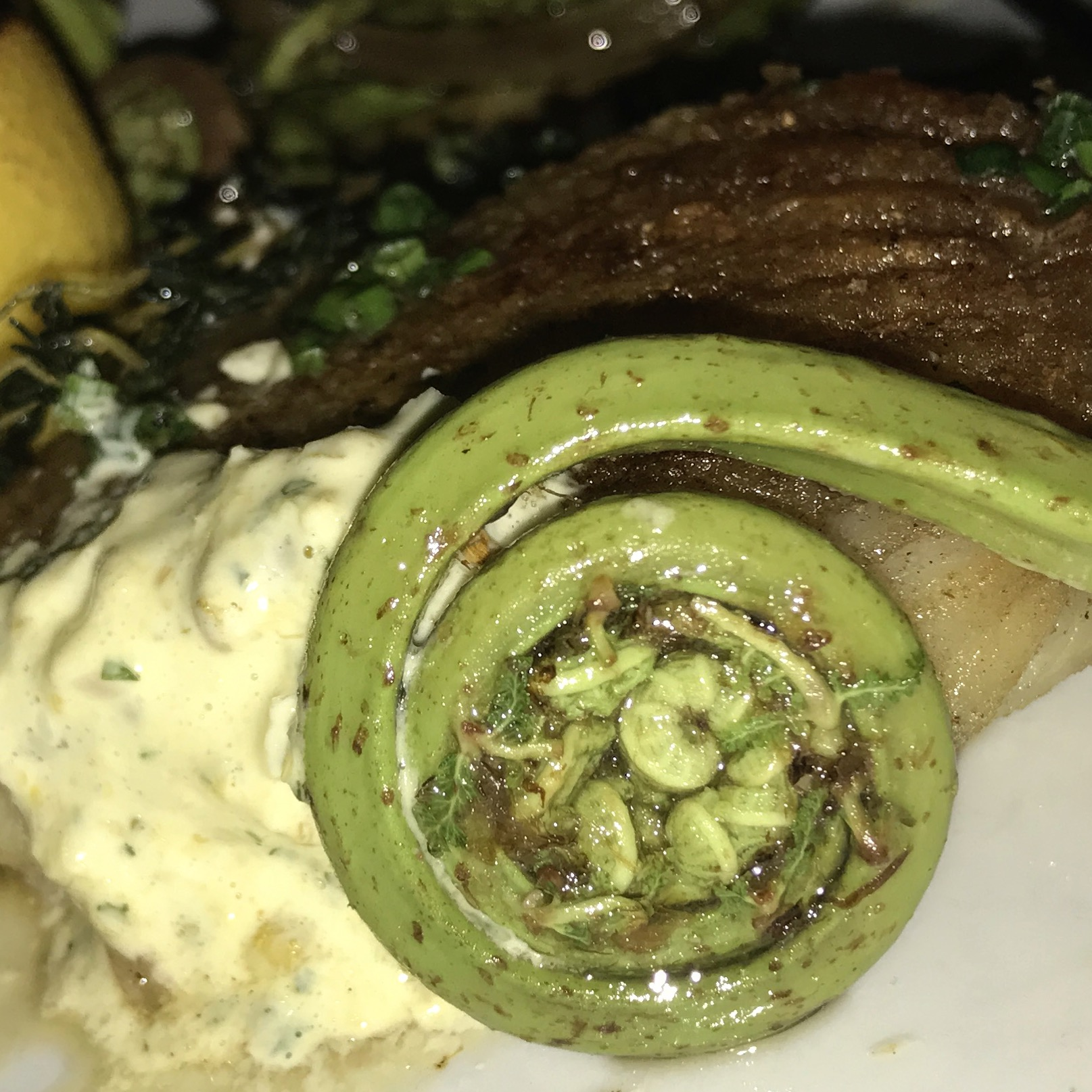 close up of a fiddlehead fern, served with skatefish,potato puree and mushrooms at Craft