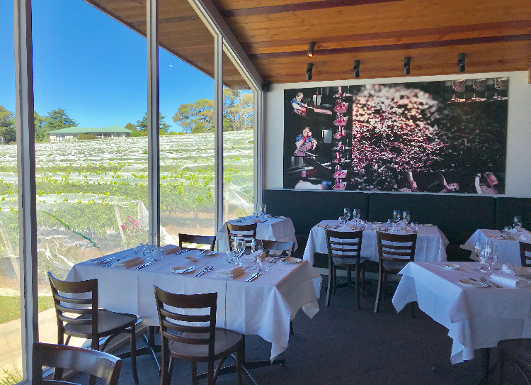 The Dining room at Paringa Winery where You can sample their award-winning wines.