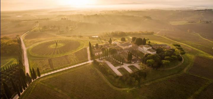 The beautiful Avignonesi Estate in Tuscany, now 100% organically farmed, can be visited for tours and tastings.