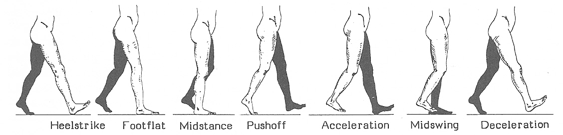Body_Alignment_Figure19.jpg
